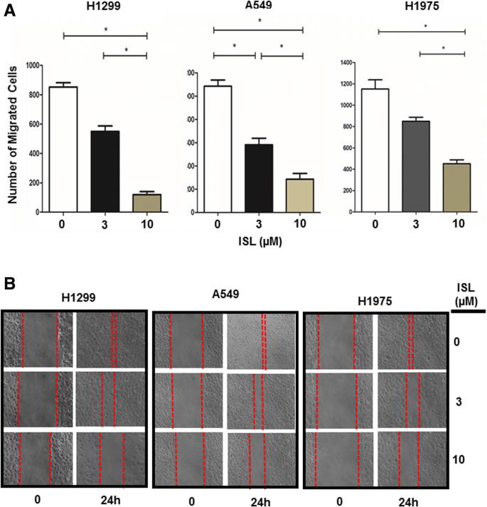 Suppression of lung cancer progression by isoliquiritigenin