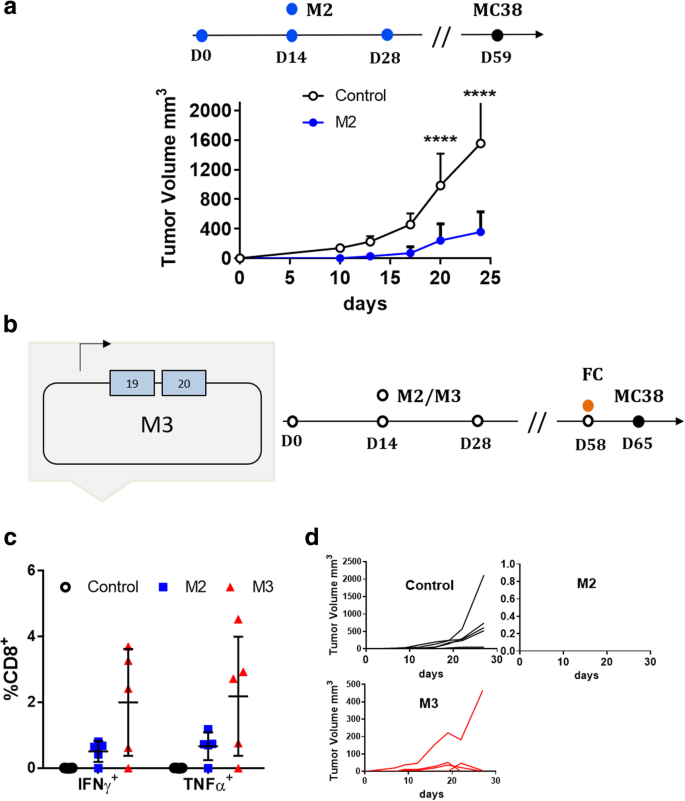 Poly-specific neoantigen-targeted cancer vaccines delay