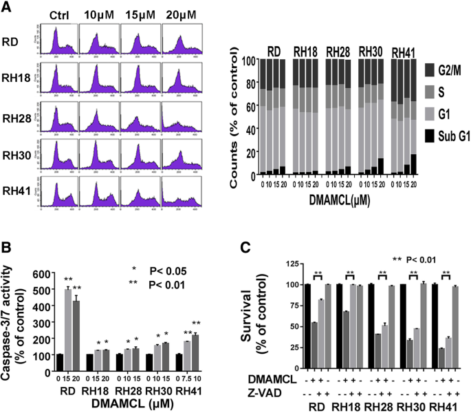 The anti-tumor growth effect of a novel agent DMAMCL in