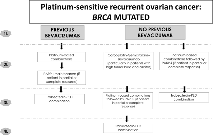 Current Strategies For The Targeted Treatment Of High Grade Serous Epithelial Ovarian Cancer And Relevance Of Brca Mutational Status Journal Of Ovarian Research Full Text