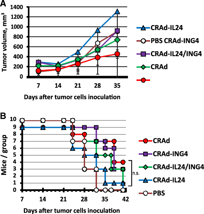 Defining A Murine Ovarian Cancer Model For The Evaluation Of Conditionally Replicative Adenovirus Crad Virotherapy Agents Journal Of Ovarian Research Full Text