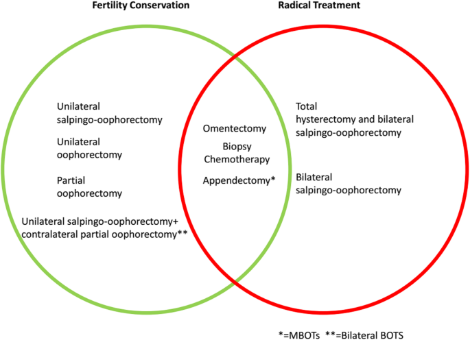 Diagnostic Extended Usefulness Of Rmi Comparison Of Four Risk Of Malignancy Index In Preoperative Differentiation Of Borderline Ovarian Tumors And Benign Ovarian Tumors Springerlink