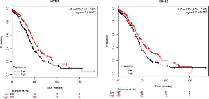 Prognostic Values And Prospective Pathway Signaling Of Microrna 182 In Ovarian Cancer A Study Based On Gene Expression Omnibus Geo And Bioinformatics Analysis Journal Of Ovarian Research Full Text