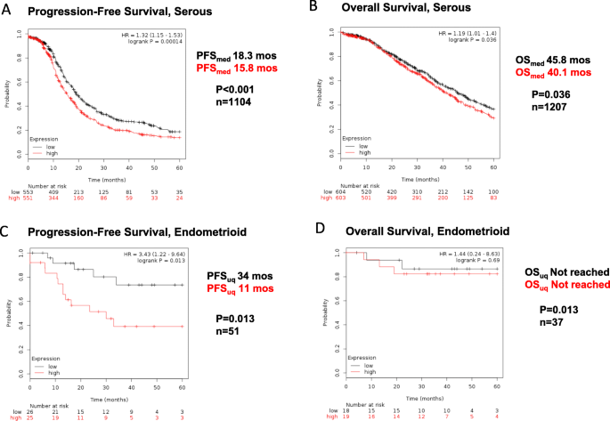Thy 1 Predicts Poor Prognosis And Is Associated With Self Renewal In Ovarian Cancer Journal Of Ovarian Research Full Text