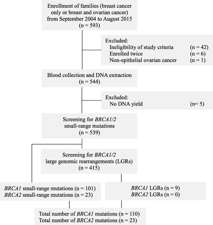 Spectrum And Prevalence Of Brca1 2 Germline Mutations In Pakistani Breast Cancer Patients Results From A Large Comprehensive Study Springerlink