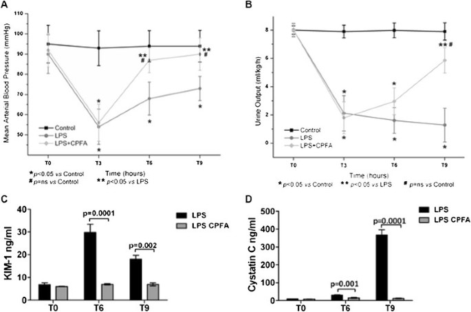 Endothelial dysfunction and renal fibrosis in endotoxemia-induced