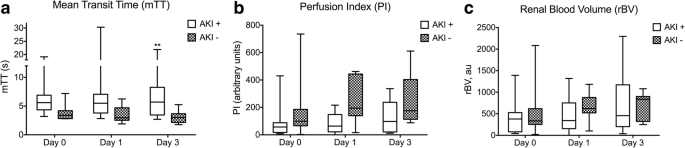 Acute Kidney Injury Is Associated With A Decrease In Cortical Renal Perfusion During Septic Shock Critical Care Full Text