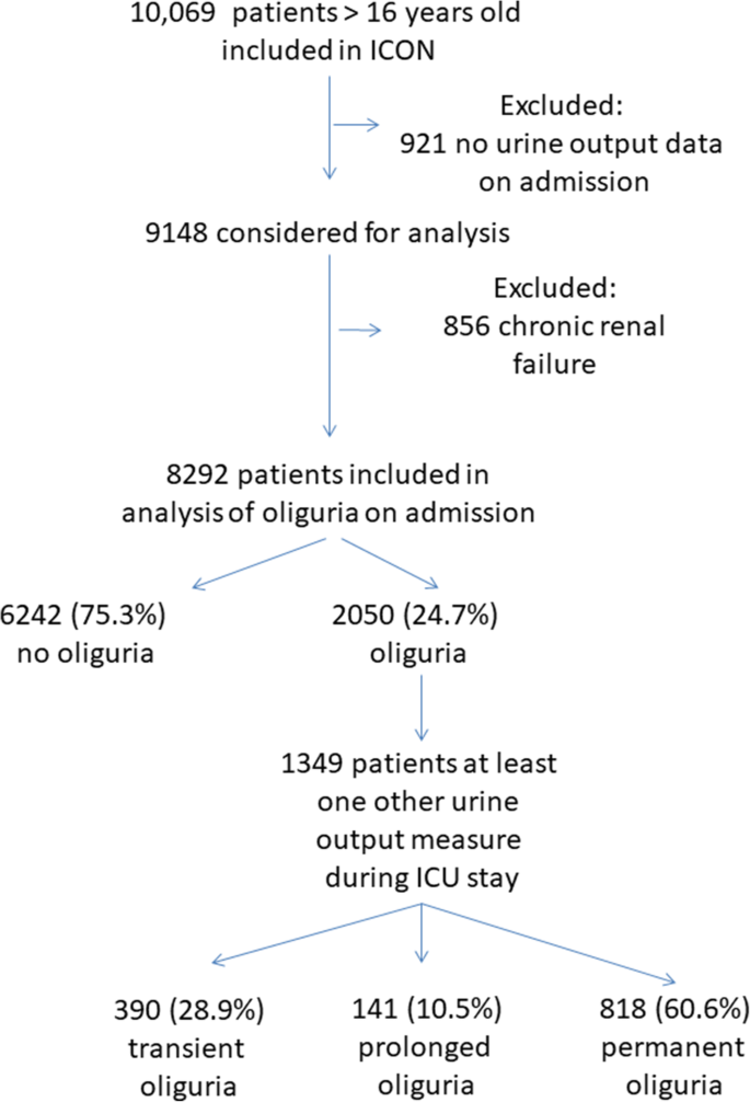 The Clinical Relevance Of Oliguria In The Critically Ill Patient Analysis Of A Large Observational Database Critical Care Full Text