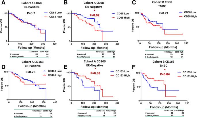 CD68, CD163, and matrix metalloproteinase 9 (MMP-9) co