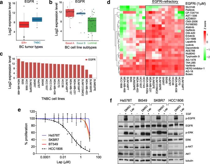 A kinase inhibitor screen identifies a dual cdc7/CDK9