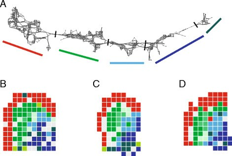 Topographical transcriptome mapping of the mouse medial ganglionic ...