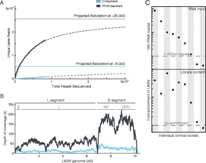 Enhanced methods for unbiased deep sequencing of Lassa and Ebola ...