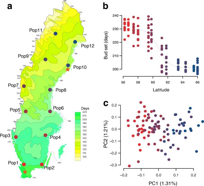 A major locus controls local adaptation and adaptive life