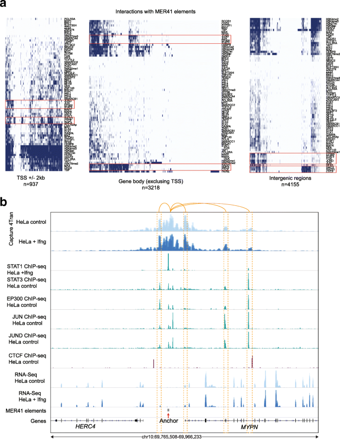 Analysis of 3D genomic interactions identifies candidate