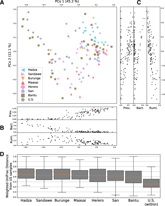 Population structure of human gut bacteria in a diverse cohort from