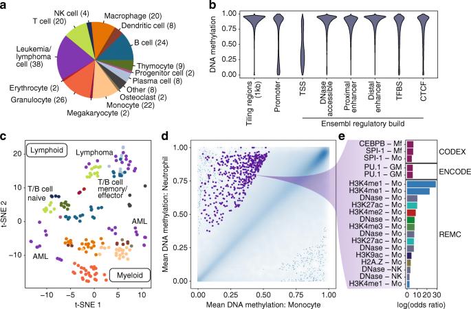 RnBeads 2 0: comprehensive analysis of DNA methylation data