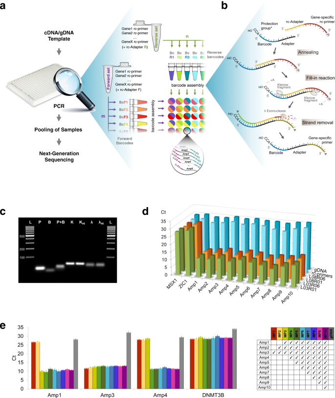 BART-Seq: cost-effective massively parallelized targeted sequencing