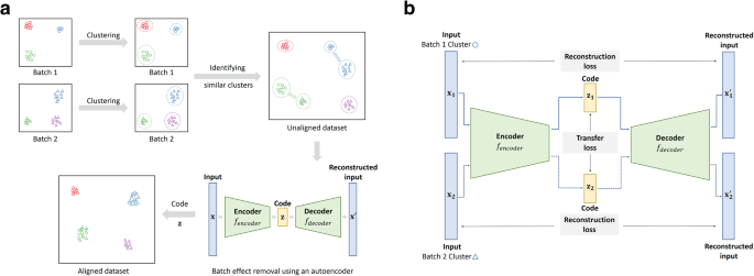 BERMUDA: a novel deep transfer learning method for single