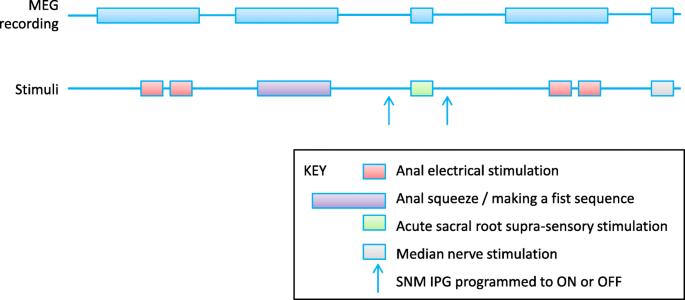 Efficacy and mechanism of sub-sensory sacral (optimised