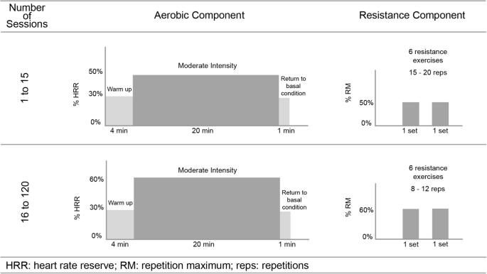 The effect of an expanded long-term periodization exercise training