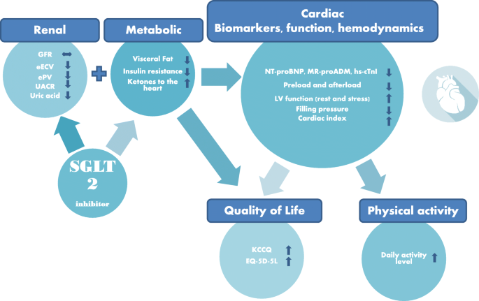 Empagliflozin in heart failure patients with reduced