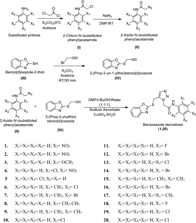 Design, synthesis and biological potential of heterocyclic