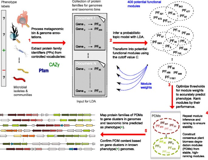 Inference of phenotype-defining functional modules of