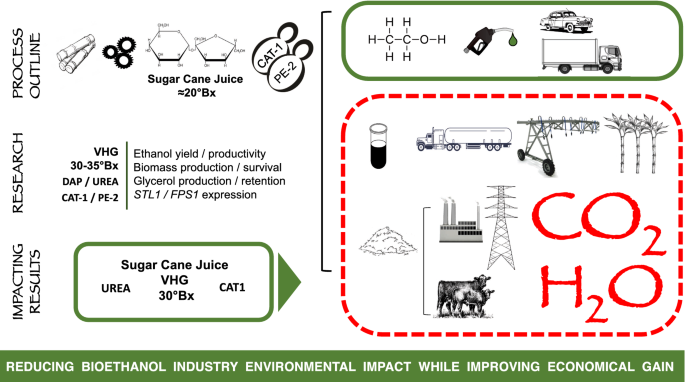 Conditions promoting effective very high gravity sugarcane juice
