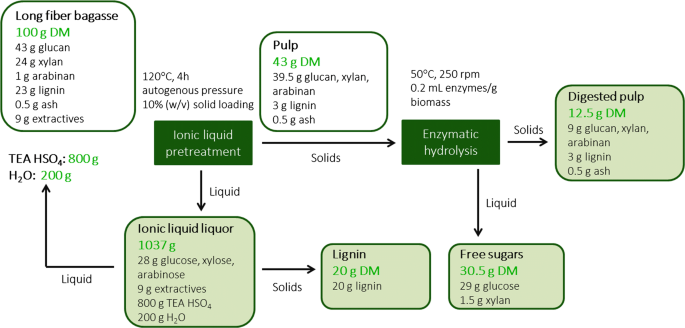 Pretreatment of South African sugarcane bagasse using a low
