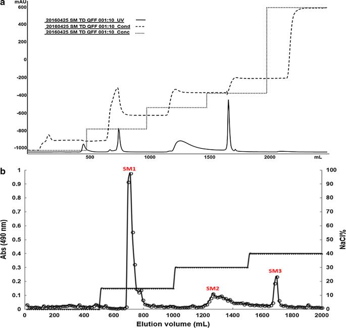 Clostridium acetobutylicum grows vegetatively in a biofilm rich in