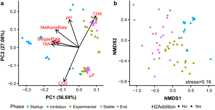 Effects of H 2 :CO 2 ratio and H 2 supply fluctuation on methane
