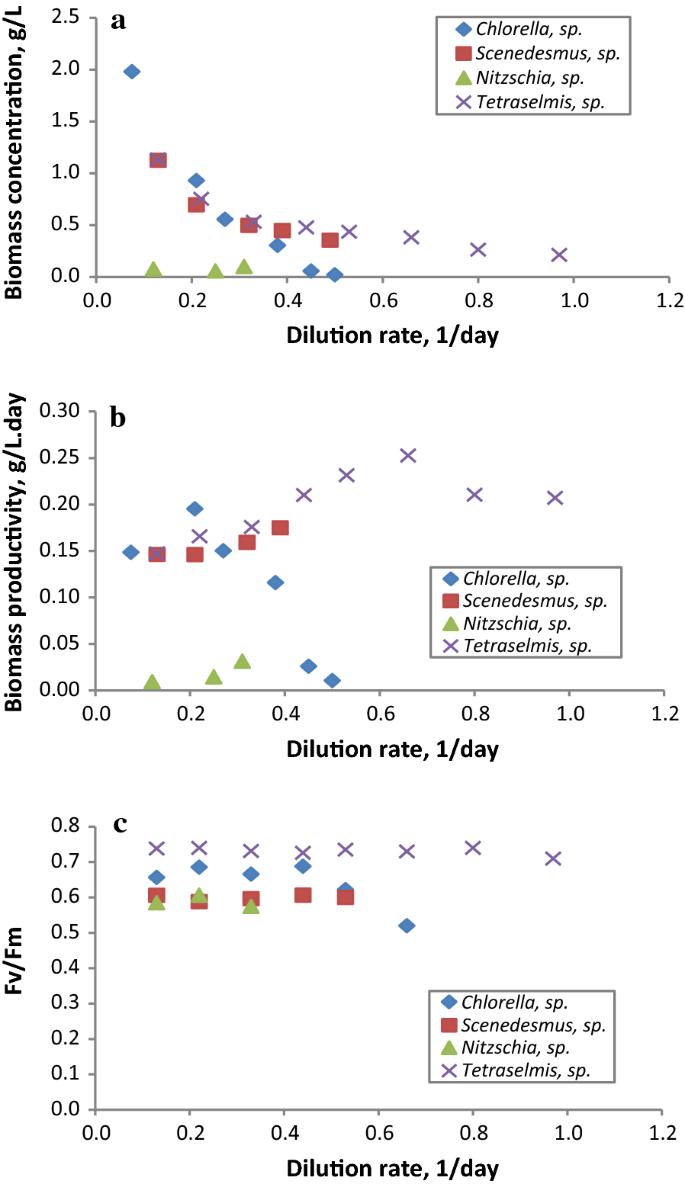 Evaluation of native microalgae from Tunisia using the pulse