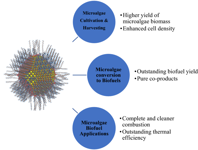 Latest development in microalgae-biofuel production with