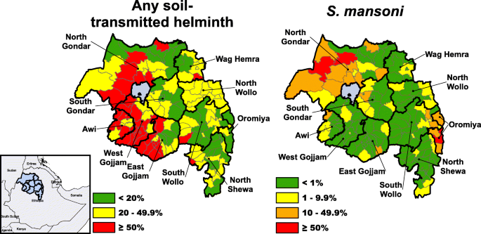 Prevalence of soil-transmitted helminths and Schistosoma
