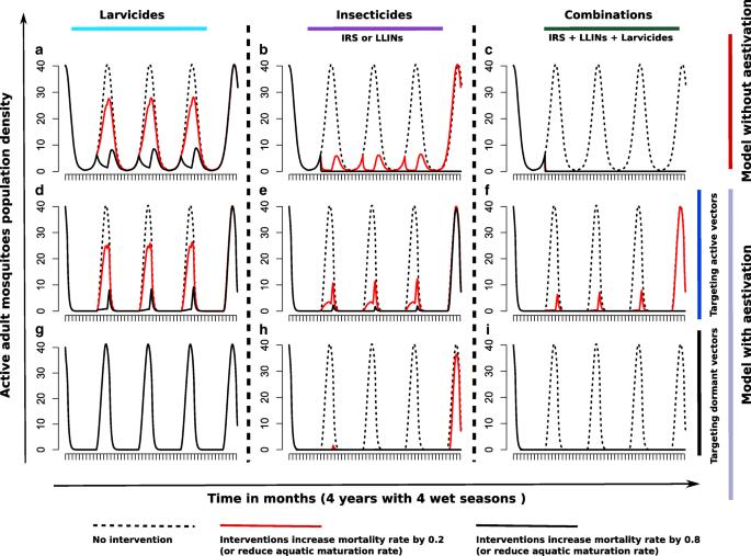 A trade-off between dry season survival longevity and wet season