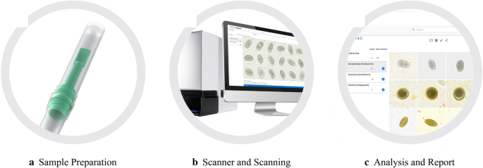 Evaluation of the VETSCAN IMAGYST: an in-clinic canine and feline ...