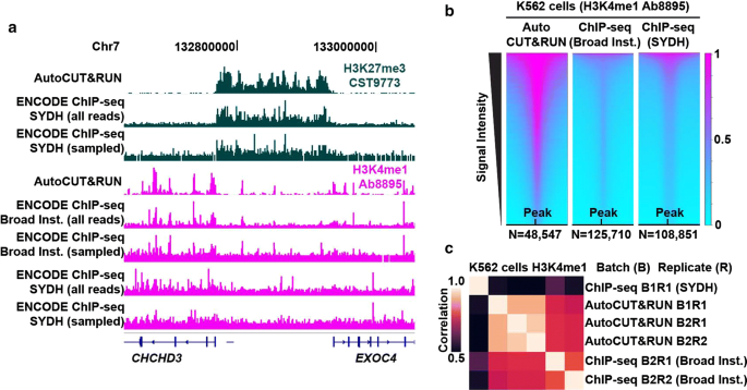 Automated in situ chromatin profiling efficiently resolves