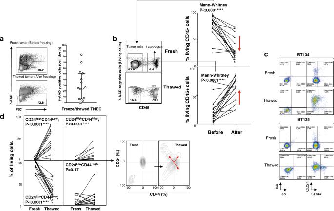 Tumor analysis: freeze–thawing cycle of triple-negative