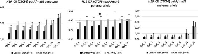 rs10732516 polymorphism at the IGF2/H19 locus associates