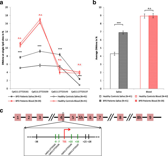 Increased BDNF methylation in saliva, but not blood, of