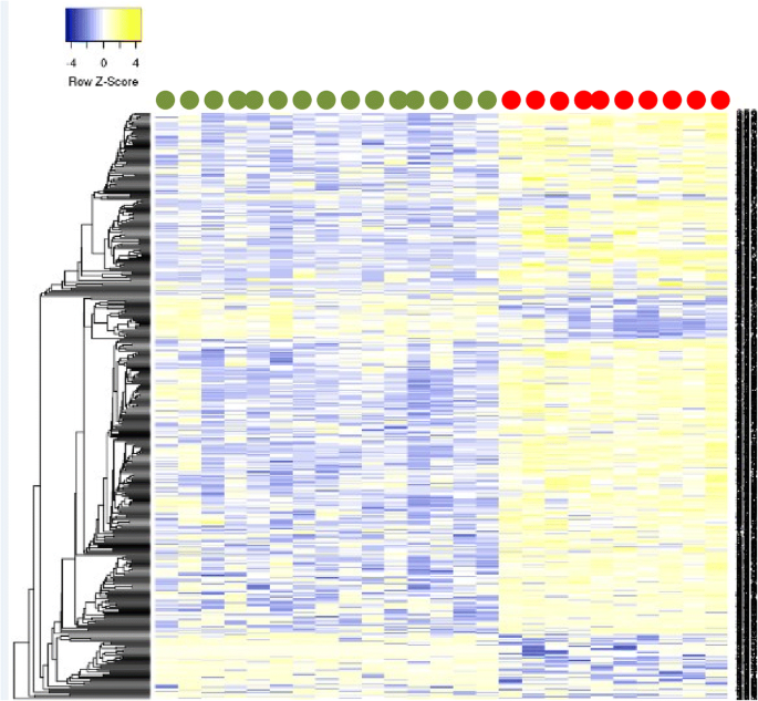 Methylome profiling of healthy and central precocious
