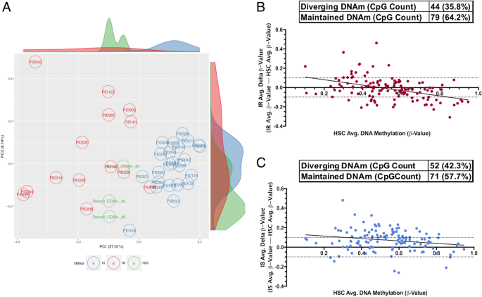 Comparative DNA methylomic analyses reveal potential origins