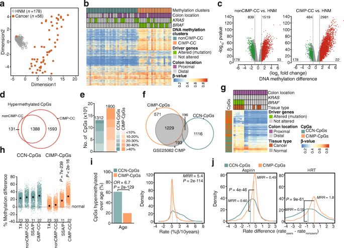 Dna Methylation Instability By Braf Mediated Tet Silencing And Lifestyle Exposure Divides Colon Cancer Pathways Clinical Epigenetics Full Text