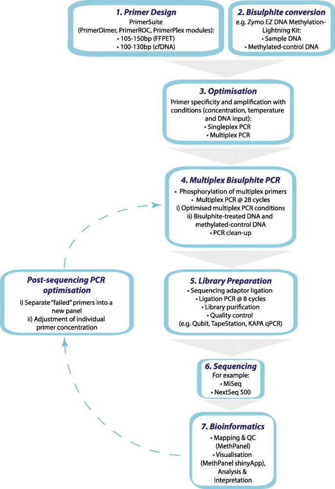 Comprehensive Evaluation Of Targeted Multiplex Bisulphite Pcr Sequencing For Validation Of Dna Methylation Biomarker Panels Clinical Epigenetics Full Text