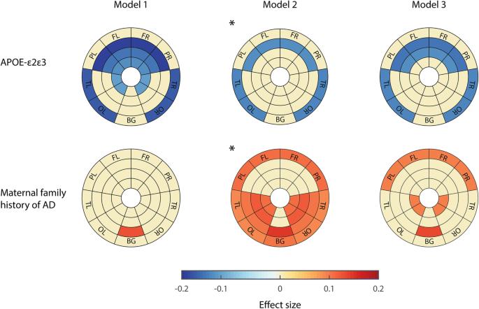 Spatial patterns of white matter hyperintensities associated