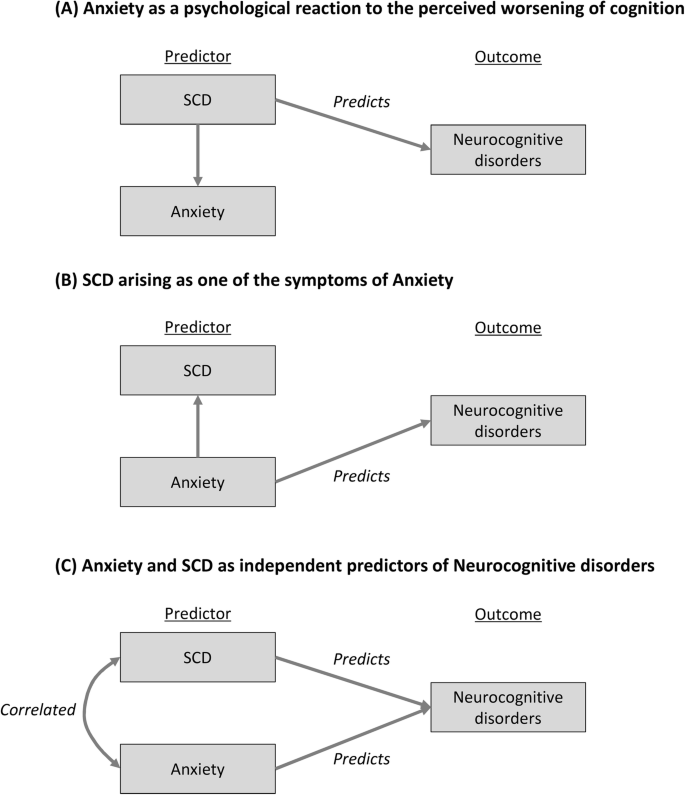 Anxiety Cognitive Impairment
