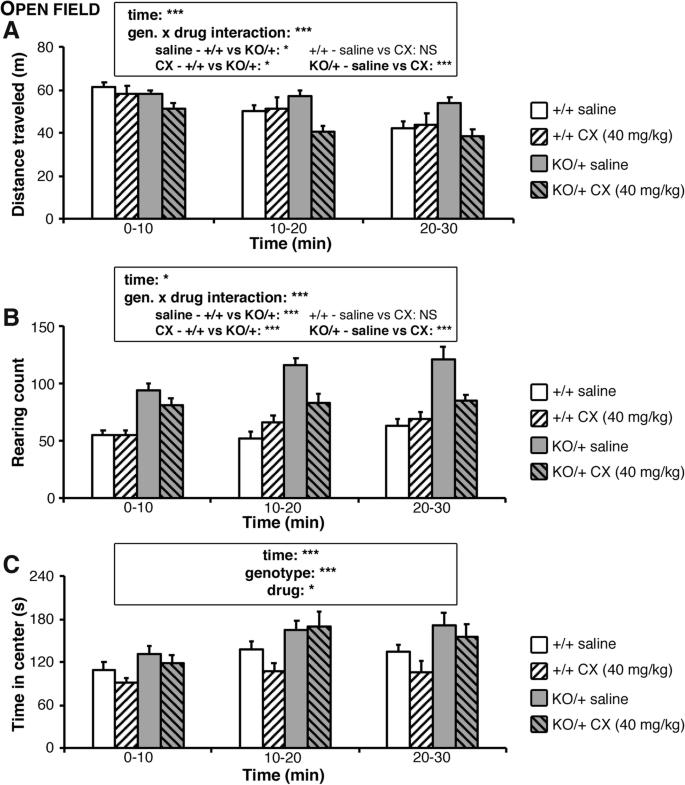 Scn2a haploinsufficient mice display a spectrum of