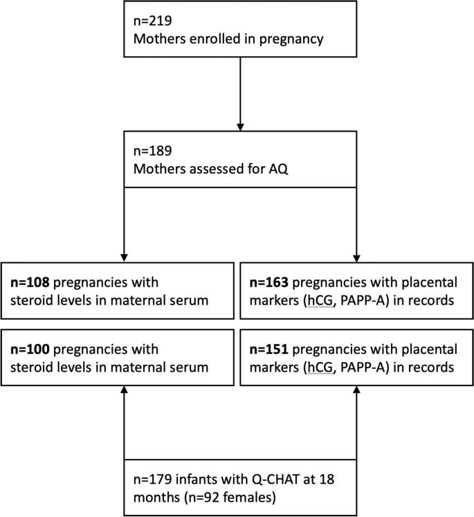 Steroids in pregnancy autism steroids in uk british dragon