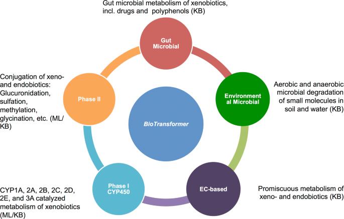 BioTransformer: a comprehensive computational tool for small