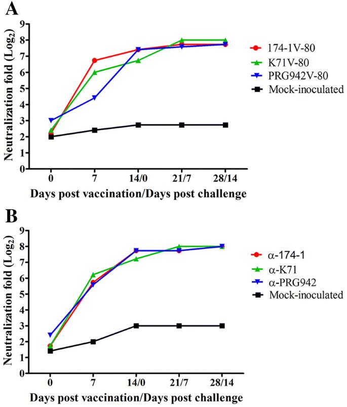 Development of a live attenuated trivalent porcine rotavirus